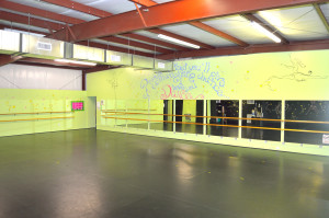 Dance Studio Pic 2