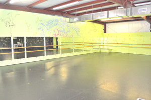Dance Studio Pic 1