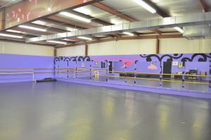Dance Studio Pic 7